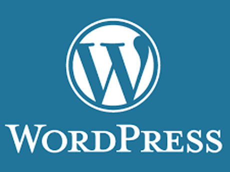 WordPress Setup & Training