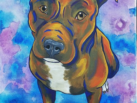 Art (signs, pet portraits)