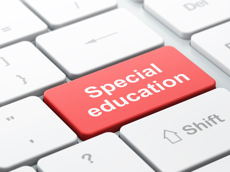 Special Education Consulting