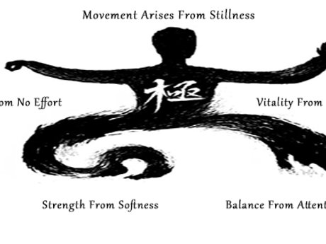 30min Tai Chi Meditation Lessons