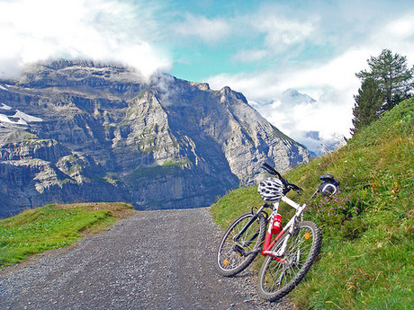 Cycling Tours in Berner Oberland