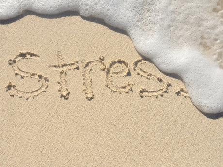 Stress relief advice