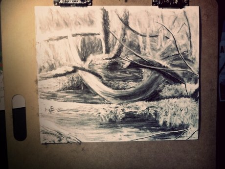 Drawing Lessons-Charcoal Landscape