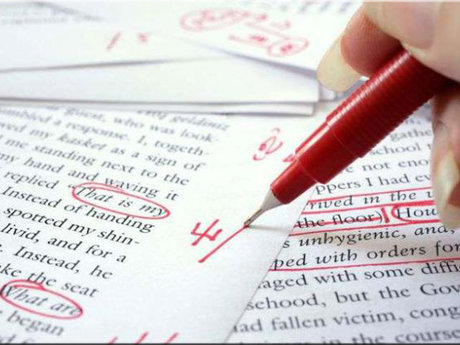 Proofreading/Editing