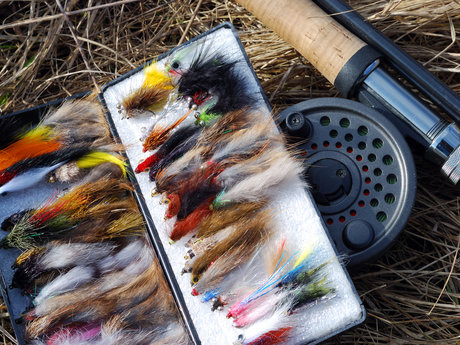 Free Fly Tying Session