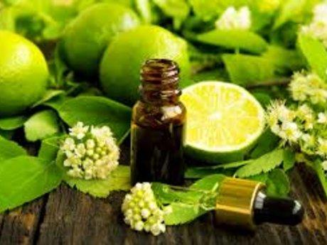 Aromatherapy Rx