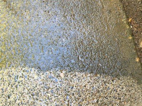 Driveway/Patio Pressure washing