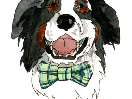 Watercolor Pet Sketch