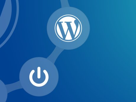 Create your web site (wordpress)