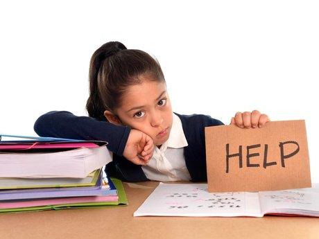 Homework Help For Grades K-9