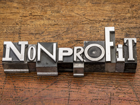 Nonprofit Consultant