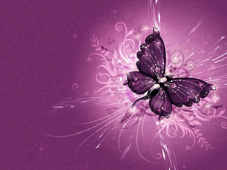 The Eclectic Butterfly Reiki