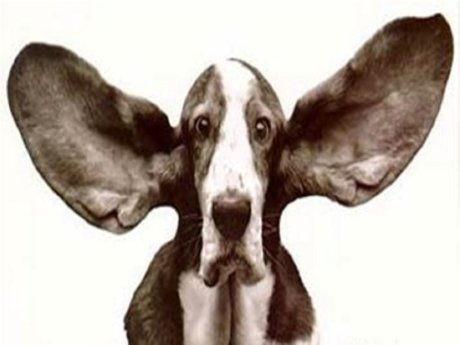 Im a good listener