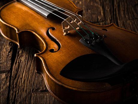 Studio Violinist