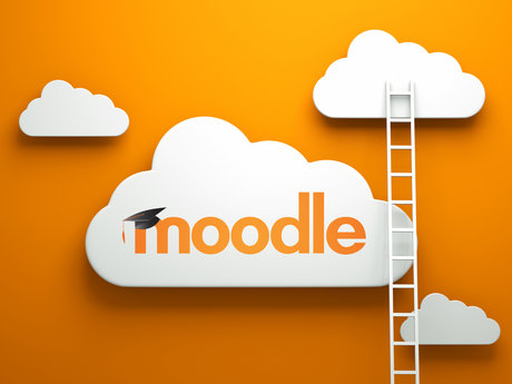 Moodle Expert