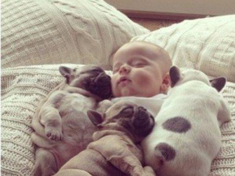 master cuddler