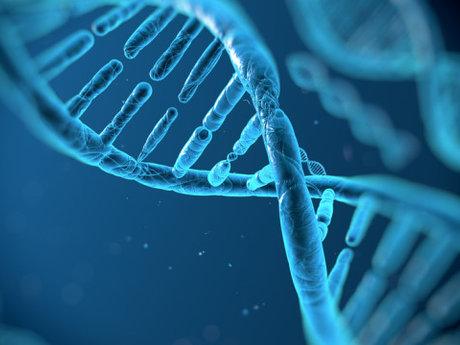 Biotechnology tutoring