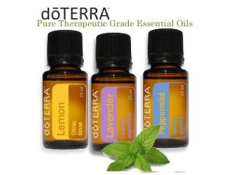 Build at home business w doTERRA