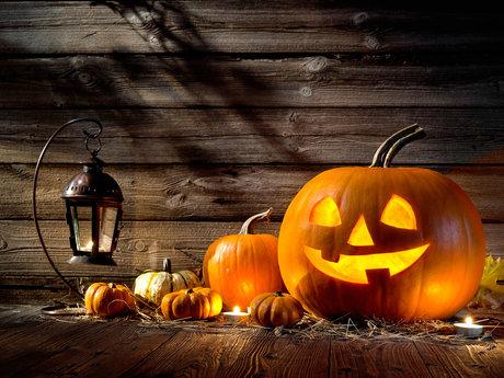 Halloween Decorating Specialist