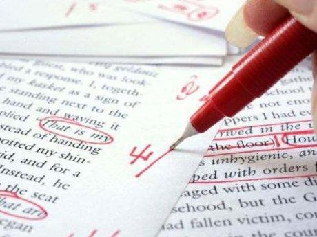 Essay/Book Editing