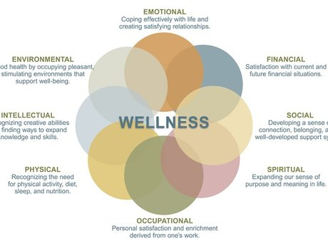 Improve your health and wellness
