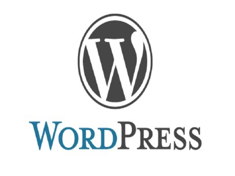 Build a simple WordPress website