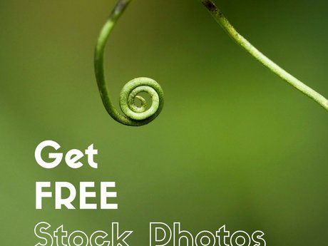 Get FREE Stock Photos