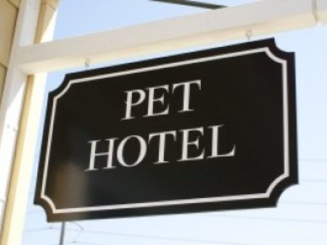I have a doggie hotel and spa!