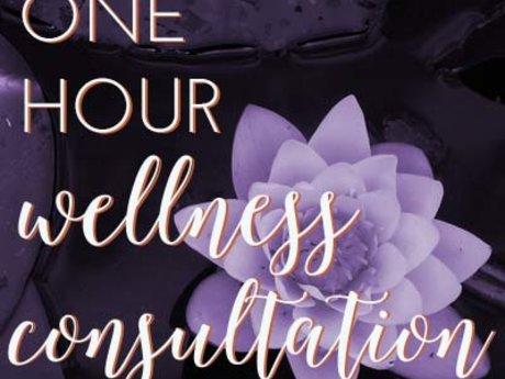Wellness Consultation- 1 hour