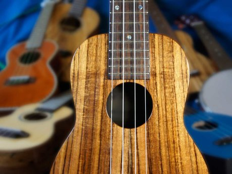 Virtual and local ukelele lessons