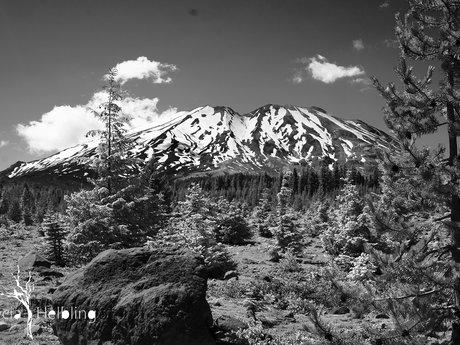Helen's Mount
