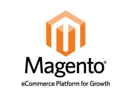 1 hour Magento training