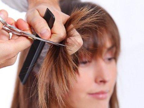 Haircutting, hair coloring