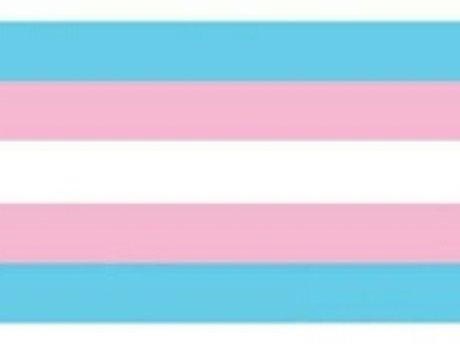 Trans Inclusion Trainer/Consultant