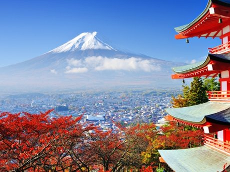 Intermediate Japanese tutor