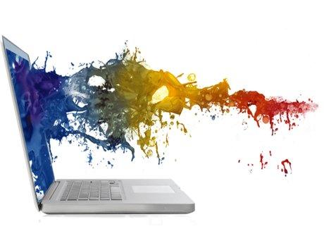 Graphic Designer and Illustrator