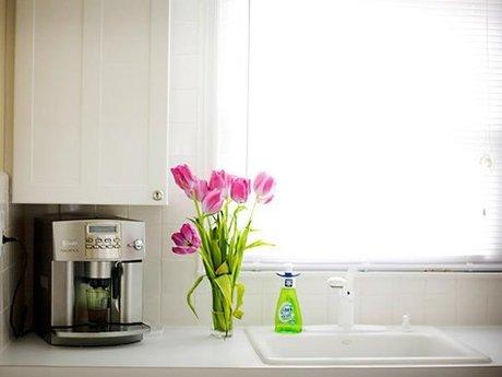 Detail-Oriented Housekeeper