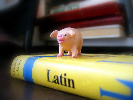 Learn Pig Latin (5 Minutes or less)