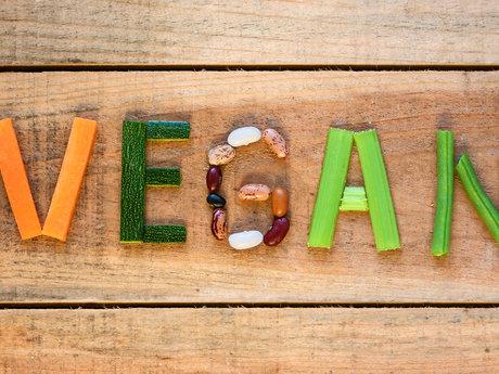 New vegan support