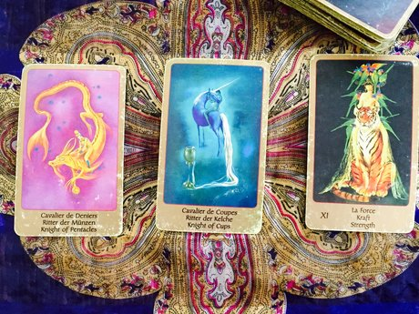 Tarot Reader:16 Years of Experience