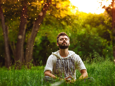 30 Minute Meditation Consultation