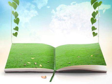 30 Minute Earth Magic Card Reading