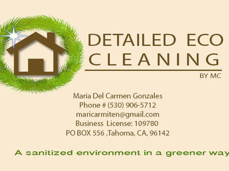 Detail eco clean your house