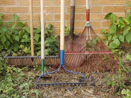 Basic yardwork