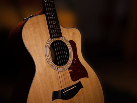 Introductory Guitar Lessons!