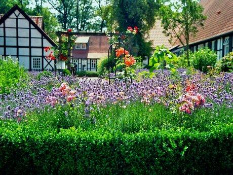 Gardening & Deep Conversation
