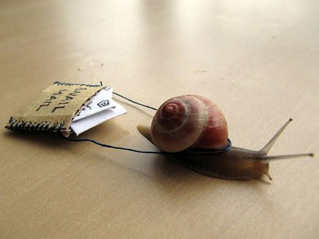 Snail mail to brighten your day!