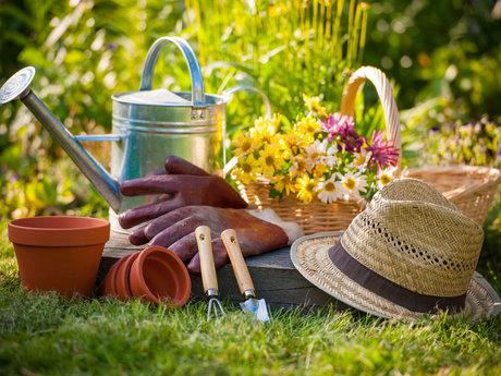 indoor and/or outdoor gardening