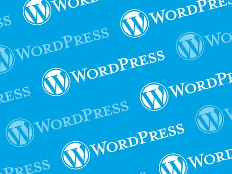 Basic WordPress Assistance