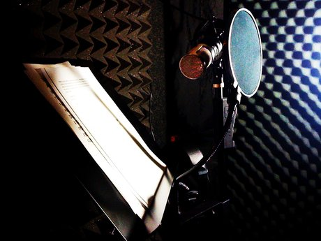 Voice Over Work